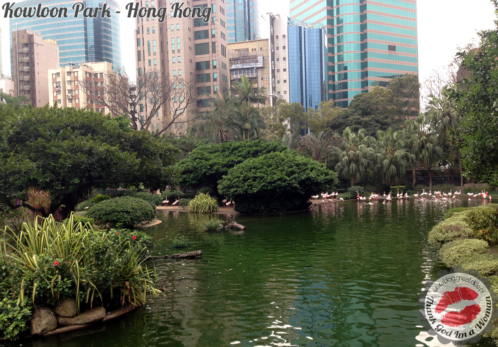 Kowloon Park - Hong Kong