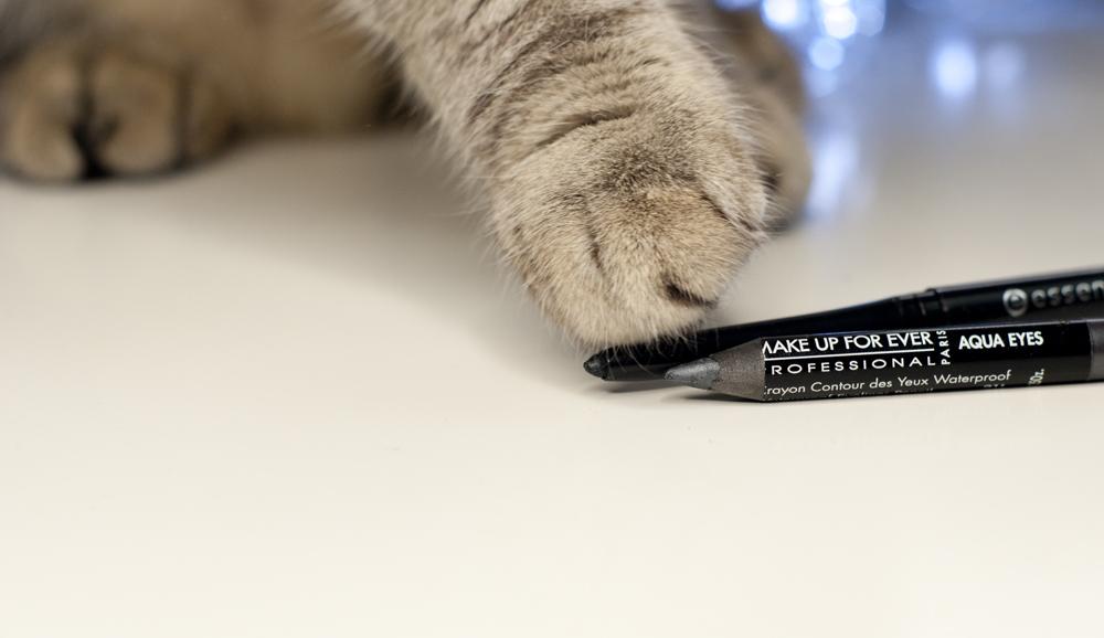 Ciężkie życie blogera... z kotem ;)