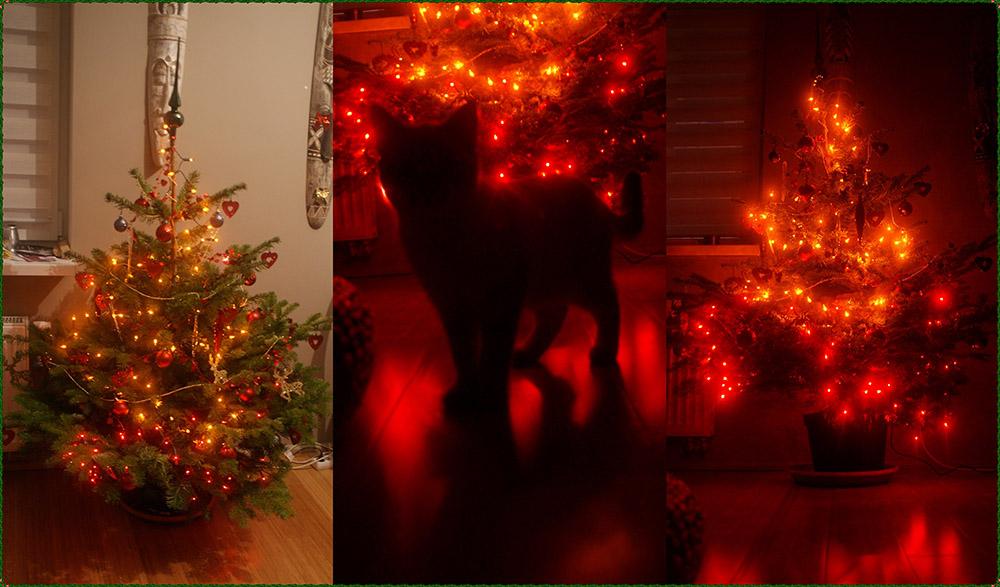 Ozdoby świąteczne kot inti